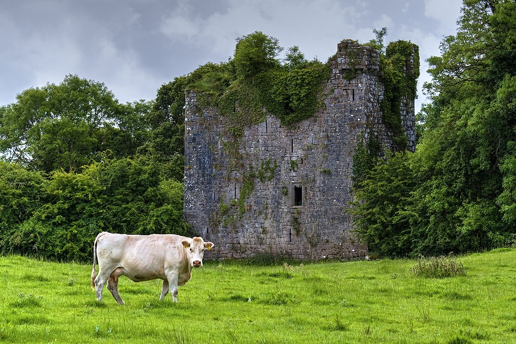 Aille Castle - Visit Galway