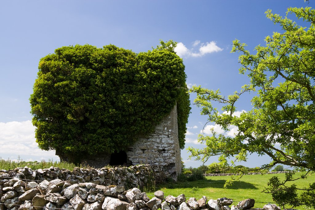 Ballylin Castle - Visit Galway
