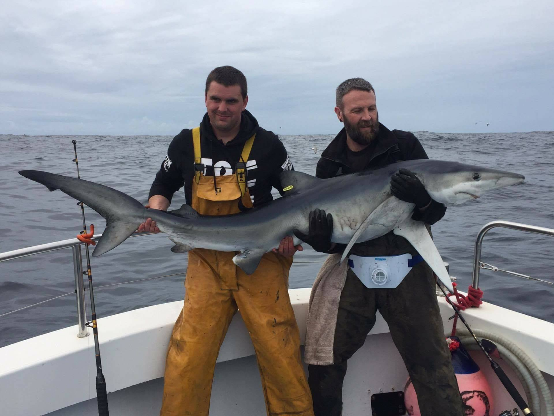 Blue Shark Angling - Visit Galway