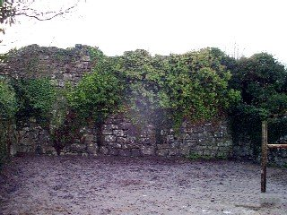Castlecreevy Castle - Visit Galway