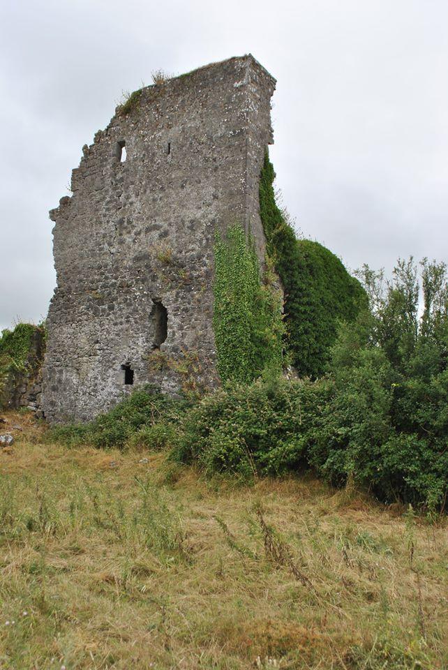 Castletown Castle Ruin - Visit Galway