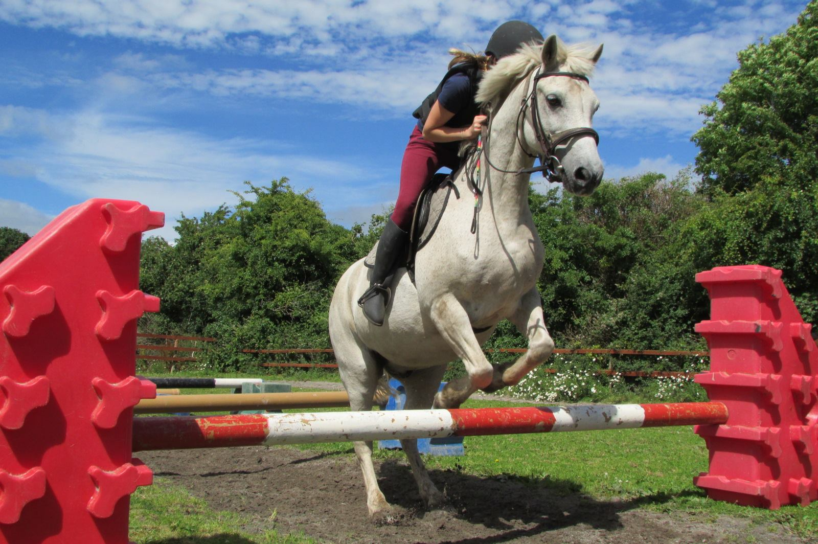 Clonboo Riding School Fence Jumping - Visit Galway