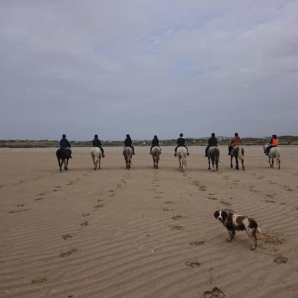 Connemara Equestrian Escapes Beach Riding - Visit Galway