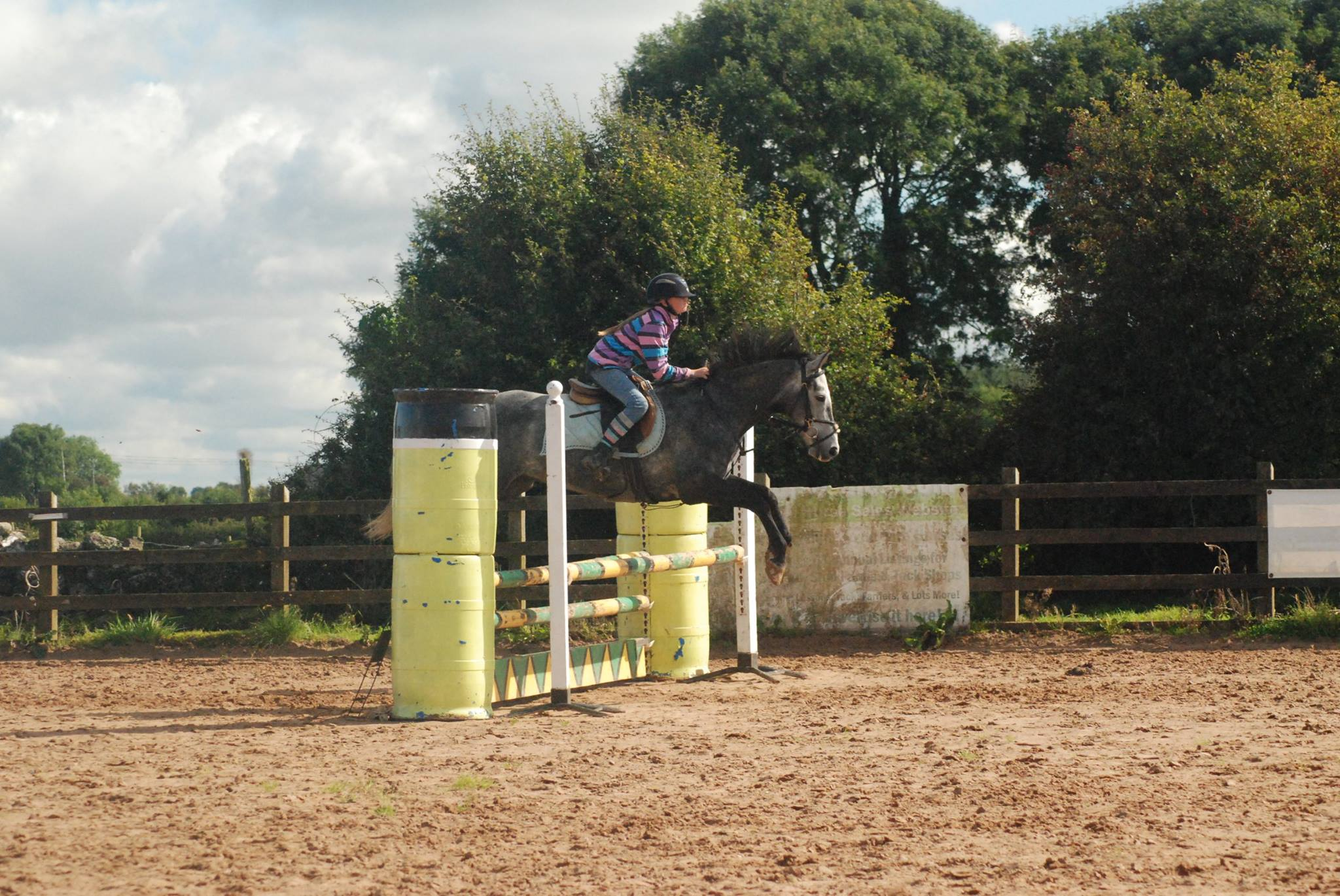 Creagh Equestrian Centre in Galway - Visit Galway