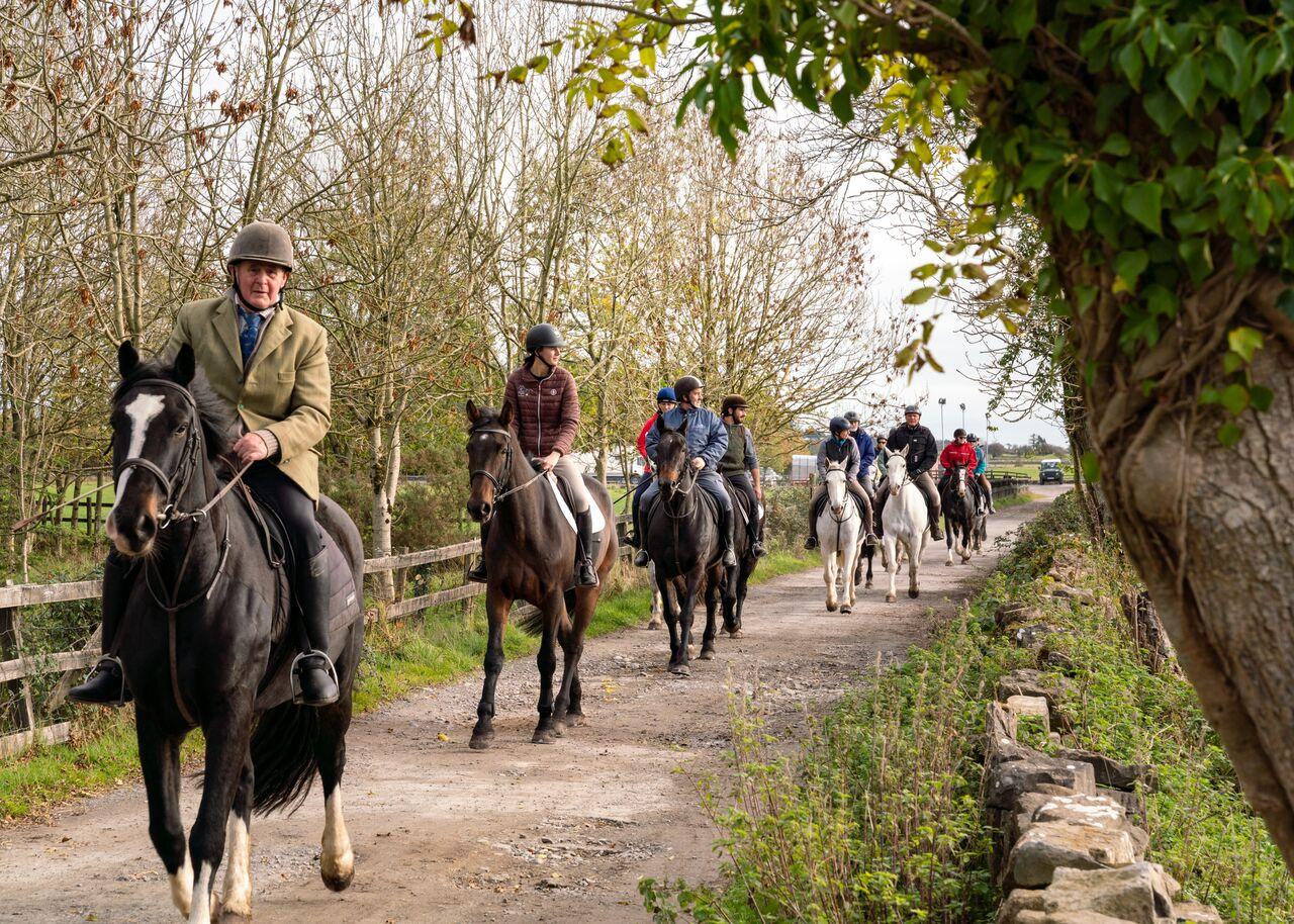 Dartfield Horse Riding Trekking - Visit Galway