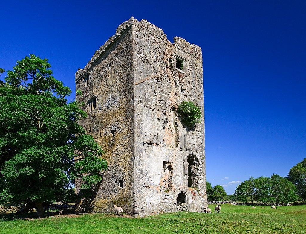 Derrymaclaughna Castle Galway - Visit Galway