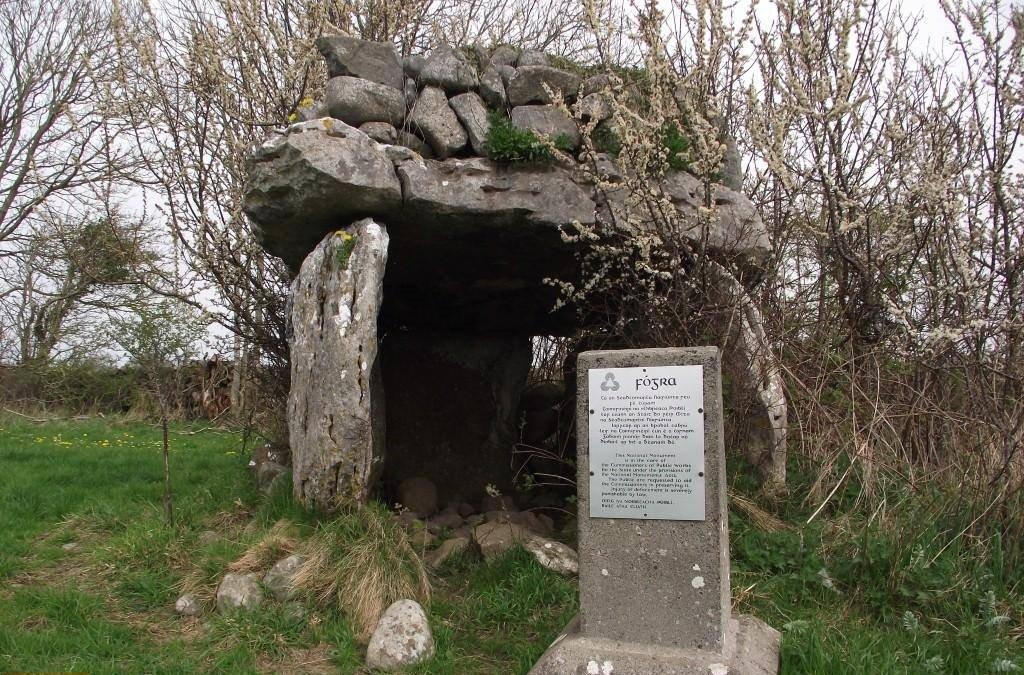 Doorus Demesne Wedge Tomb Information - Visit Galway