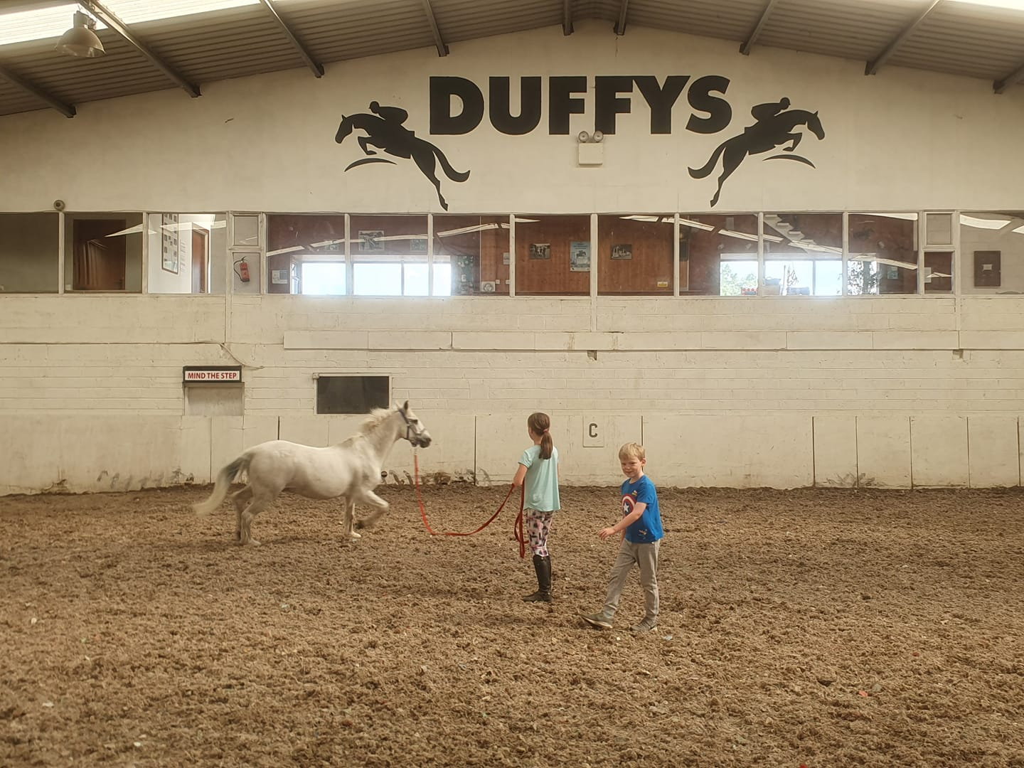 Duffy's Equestrian Centre in Galway - Visit Galway