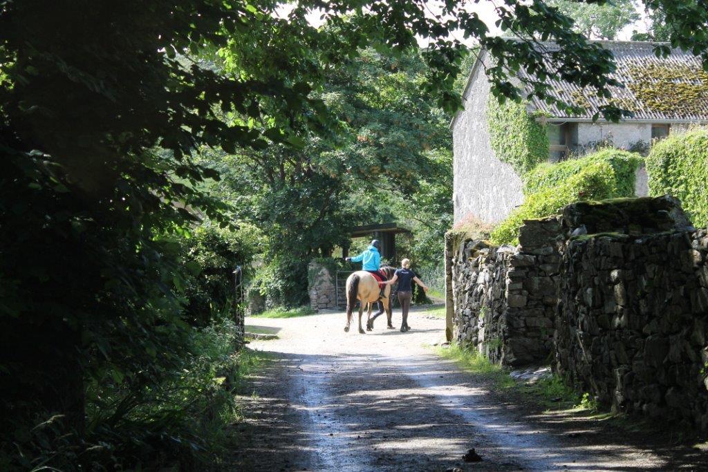 Errislannan Riding Centre - Visit Galway