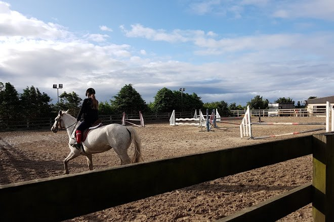Feeney's Riding Stables Jumping - Visit Galway
