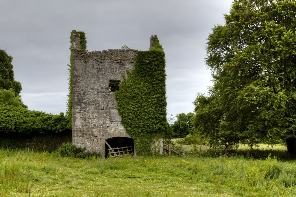Ffrench Castle Outbuilding - Visit Galway