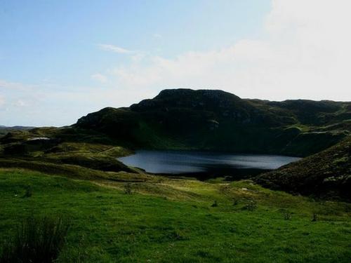 Large Lake Creature - Visit Galway