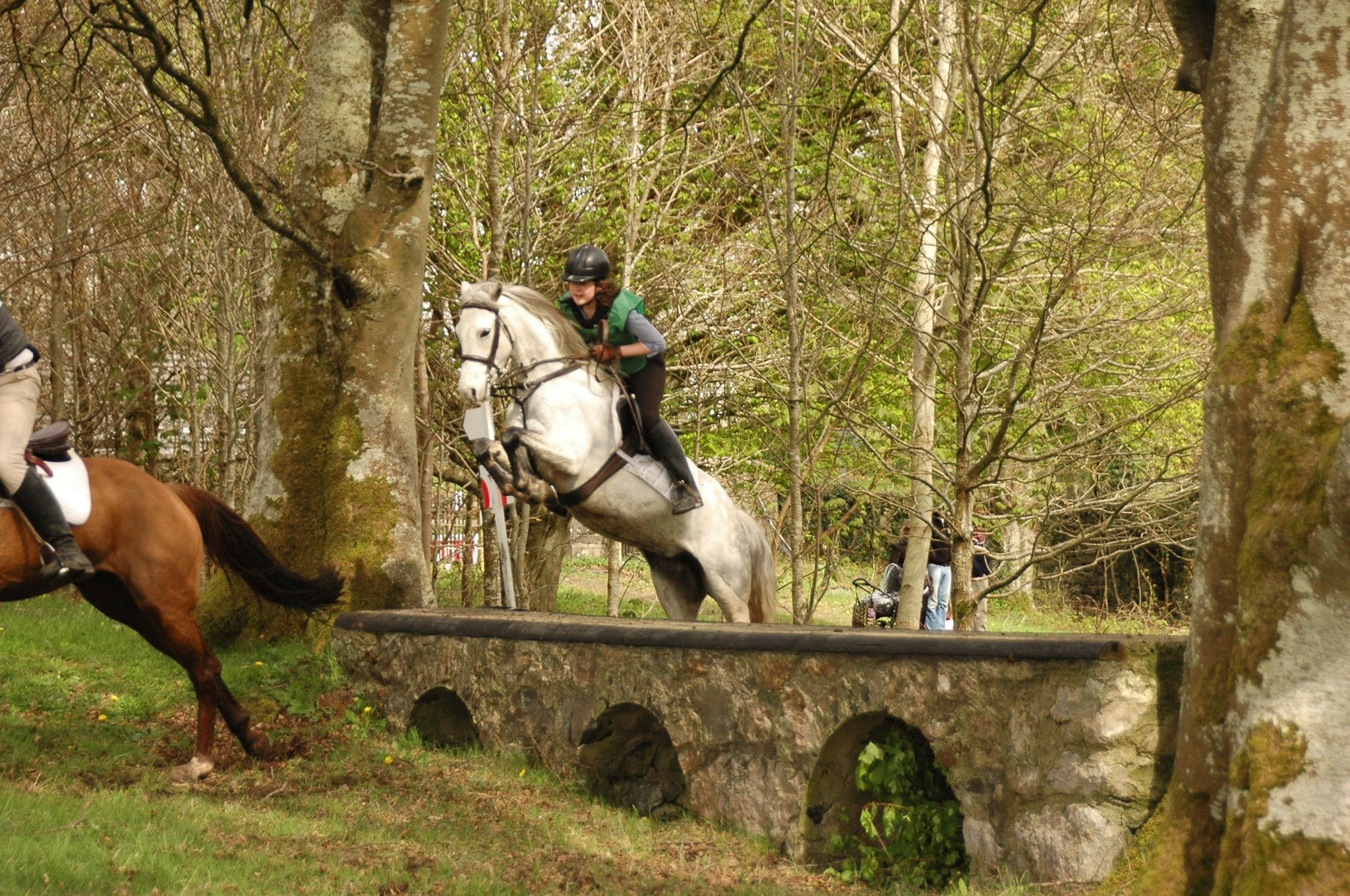 Loughrea Equestrian Centre Horse Jumping - Visit Galway