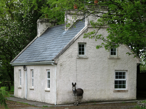 MJ Molloy Cottage - Visit Galway