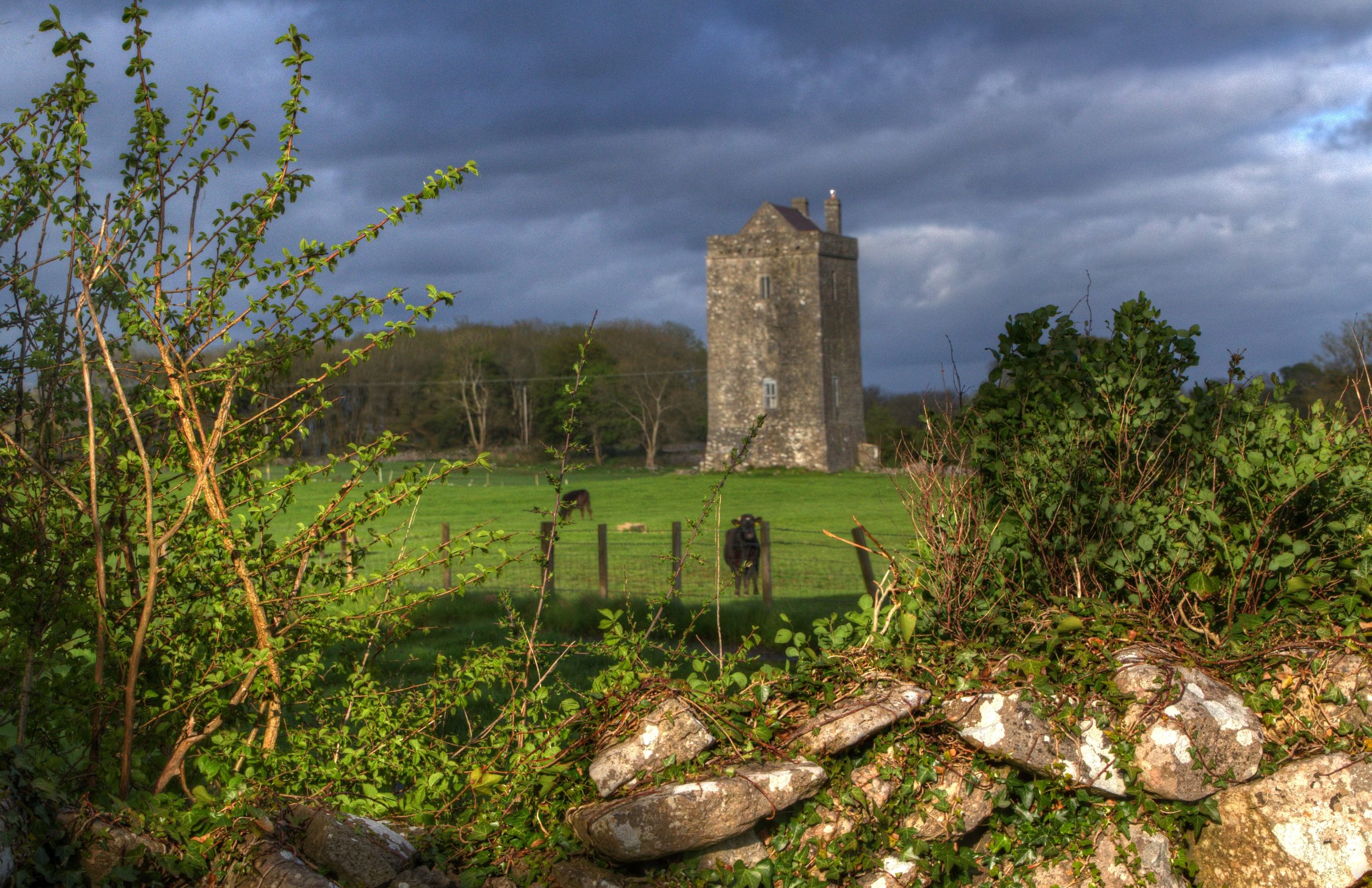 Moyode Castle Ruin in Galway - Visit Galway