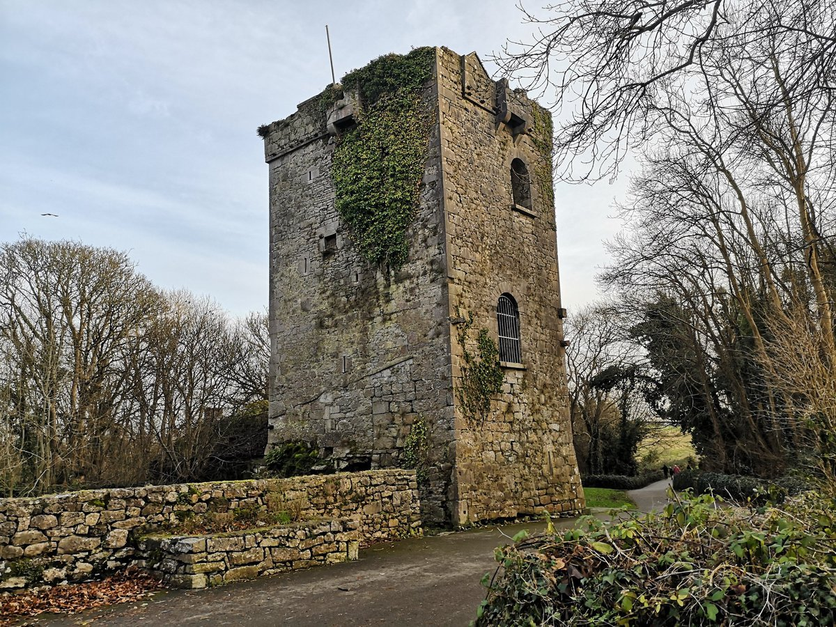 Rinville Castle Ruins - Visit Galway