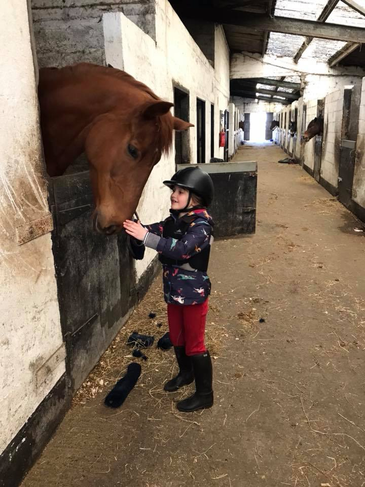 Rockmount Riding Centre Stables - Visit Galway