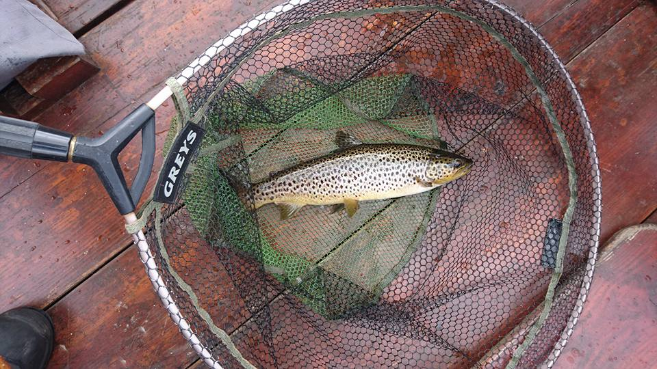 Tom Doc Fishing and Guiding Catch - Visit Galway