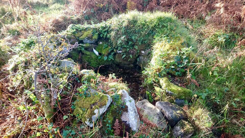 Well of the Seven Daughters Holy Well in Galway - Visit Galway